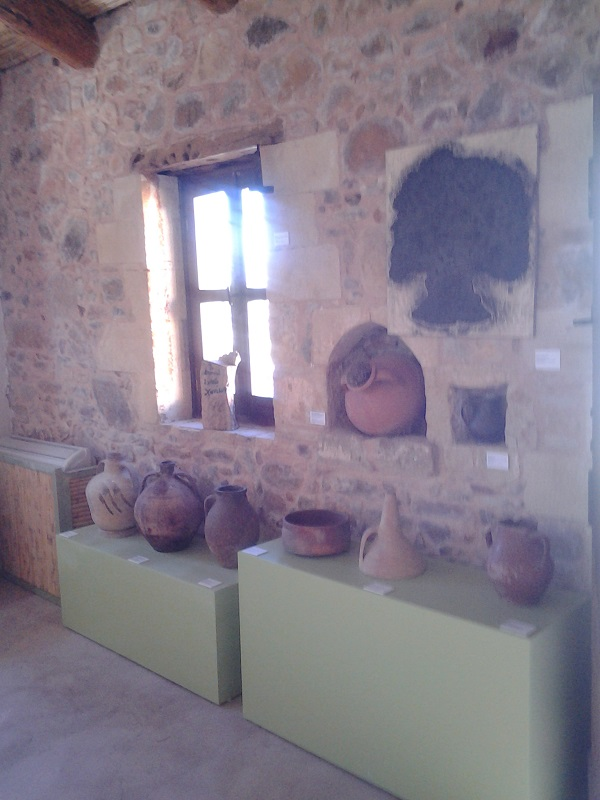 The 2000 year old olive tree museum